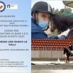 Equitazione: corso per Operatori Base S.E.D. 28 e 29 Agosto